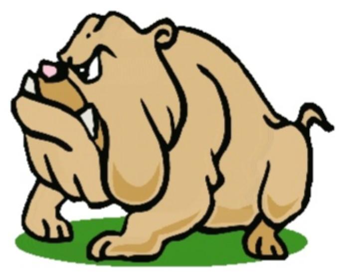 Jackson Heights Bulldog Online Store
